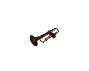 "Bb Trumpet ""Toni Maier"""