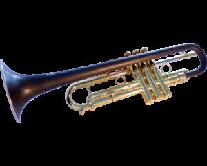 """Bb Trumpet """"TML"""""""